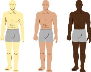 Die verschiedenen Hauttypen